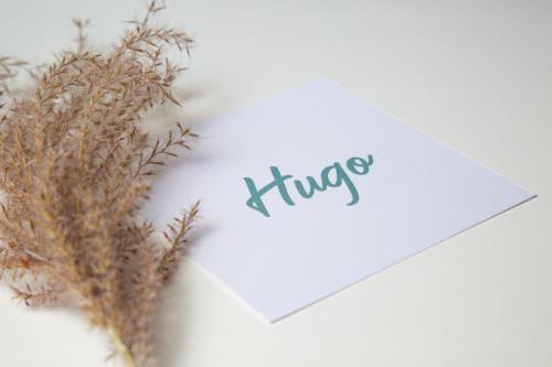 Geboortekaartje collectie - Hugo